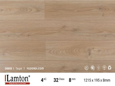 Sàn gỗ Lamton 8mm - D8808